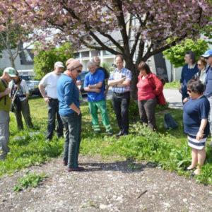 Beim Praxiskurs Blumenwiese wird eine vorbereitete kommunale Fläche gemeinsam eingesät