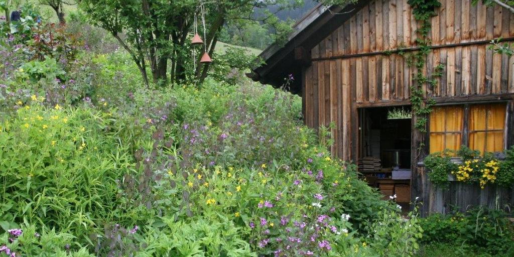 Bluehender Garten